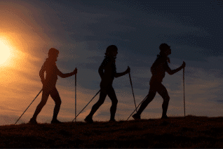 Nordic Walking For Dummies
